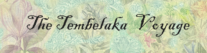 The-Tembalaka-Voyage-web.jpg